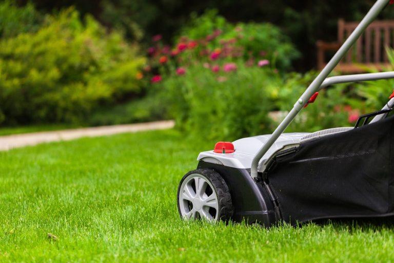 A lawn mower on beautiful green grass.