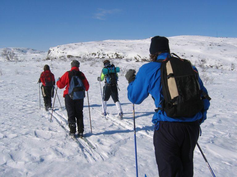 Four people cross-country ski across a sunny landscape in Saskatchewan.