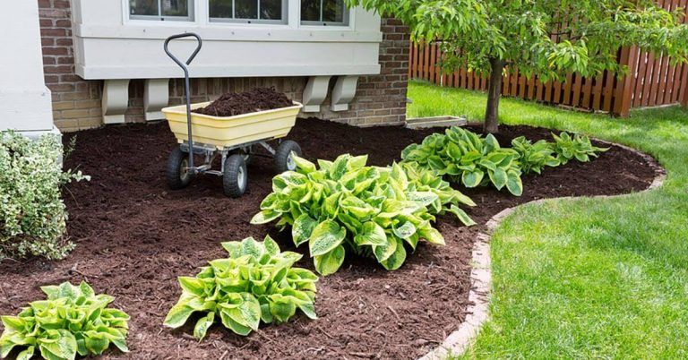 A wheelbarrow full of mulch is ready to spread around the front of the house.