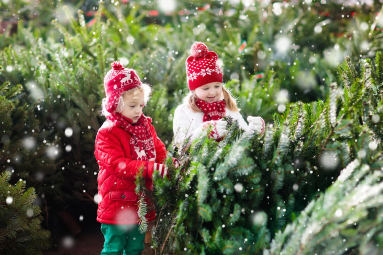 Two little kids help pick out their Christmas tree as snow gently falls.
