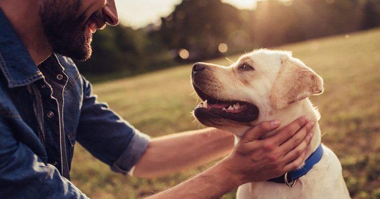 A man pets a dog.