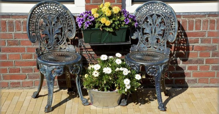 Wrought iron chairs with plants on a patio