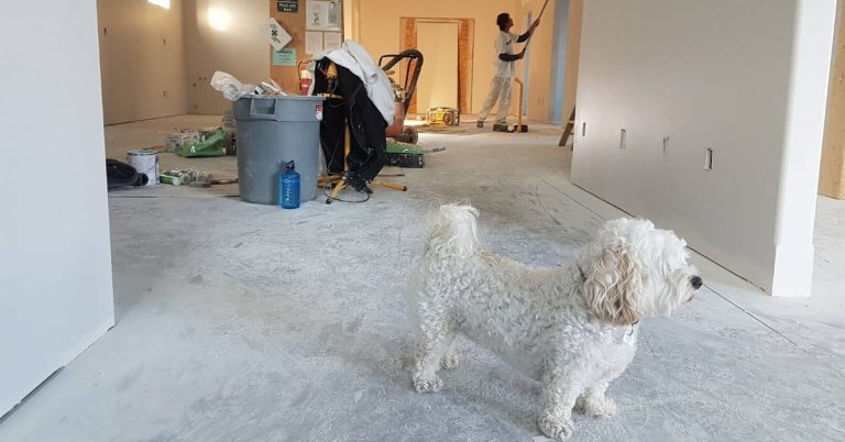 a home mid-renovation